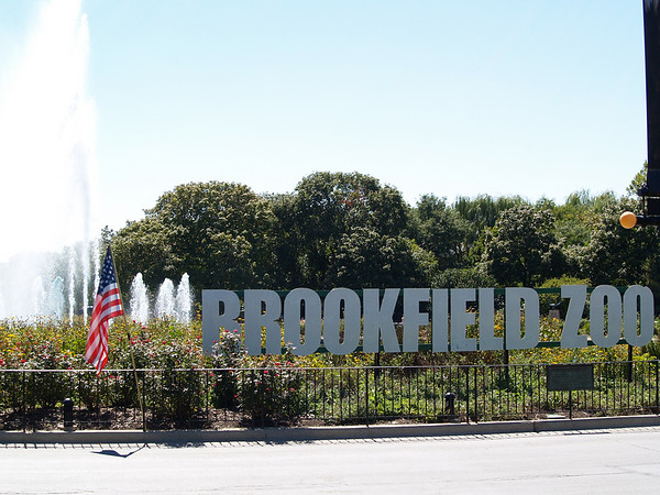Second Visit To Brookfield Zoo