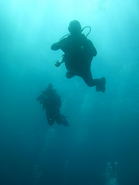 Diving in the Galapagos (5 of 392)