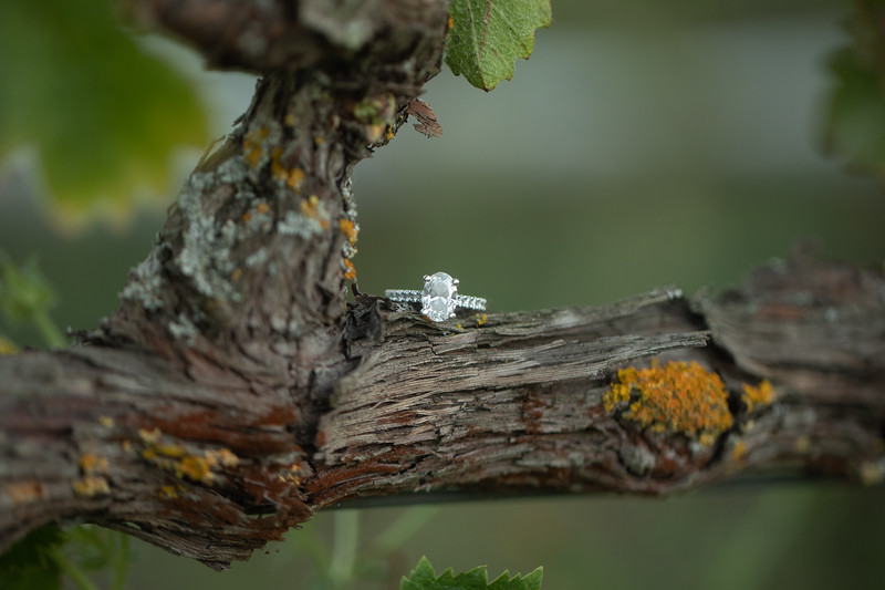 Leon and Julianne engagement session-72.jpg