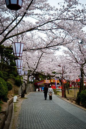 Senkouji, Onomichi, Hiroshima - April 9, 2010