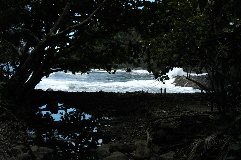 171- 20080410- Hawaii 15- Enroute to Hilo- Hawaii Tropical Botanical Gardens DSC_2750a.jpg
