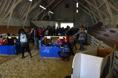 34442 Kiddie Day at the Farm