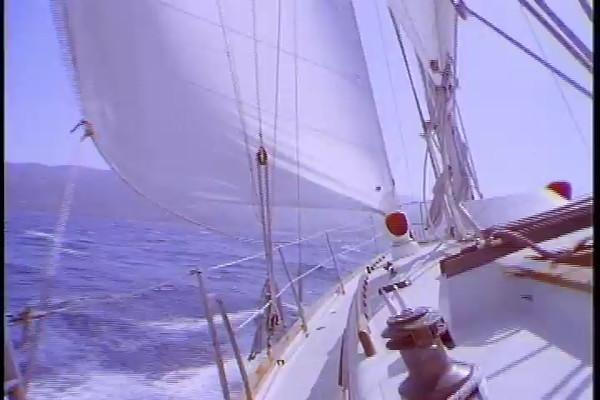 sail.16.mov