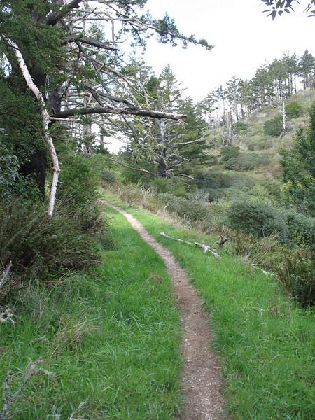 Nice trail.