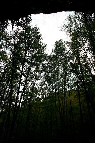 Pisgah Forest 9-30-12 77.jpg
