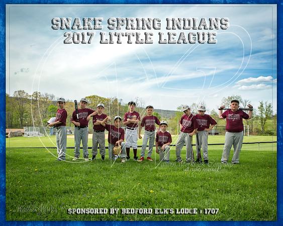 Snake Spring Indians 2017 LL Swaim