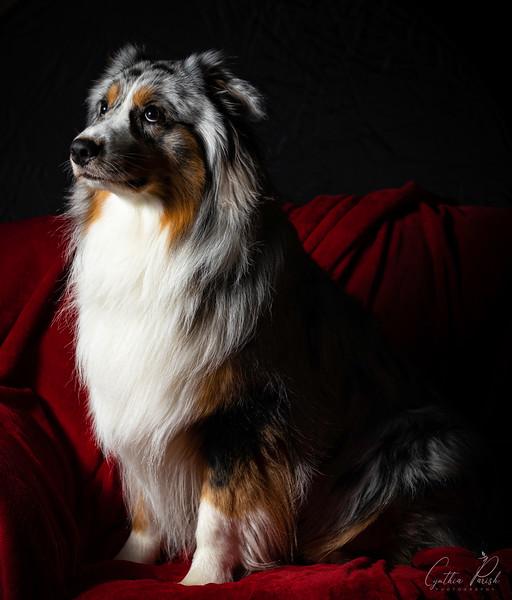 Portrait of Beaux