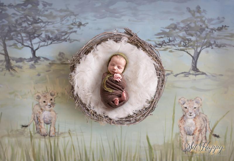 lionkingdigitalbackdrop.jpg