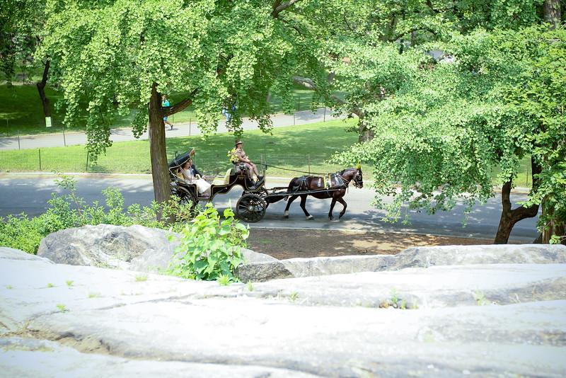 Caleb & Stephanie - Central Park Wedding-8.jpg
