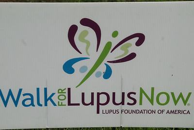 Lupus Walk 2012