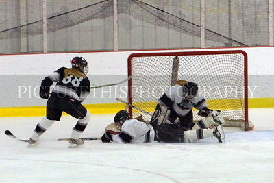 Langdon Girls Hockey