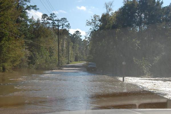 Journal Site 137: Sandy Creek COE Campground, Steinhagen Lake, Jasper, TX - Oct 27, 2009