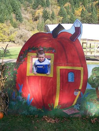 Pumpkin Patch 2007