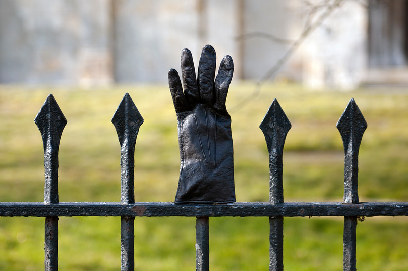 Glove on fence