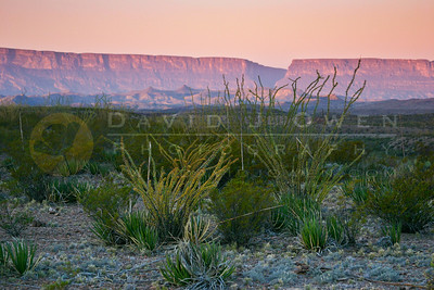 Big Bend National Park - Mountains