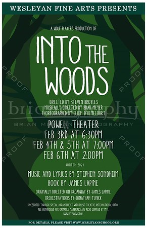 2020 Winter HS Play - Into The Woods