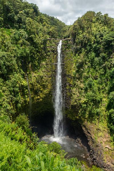 Hawaii2019-162.jpg
