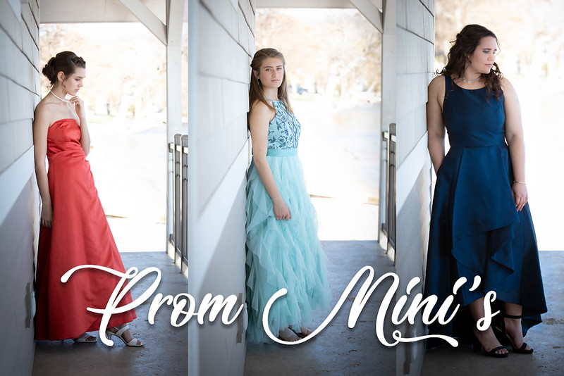 Prom Mini 2.jpg