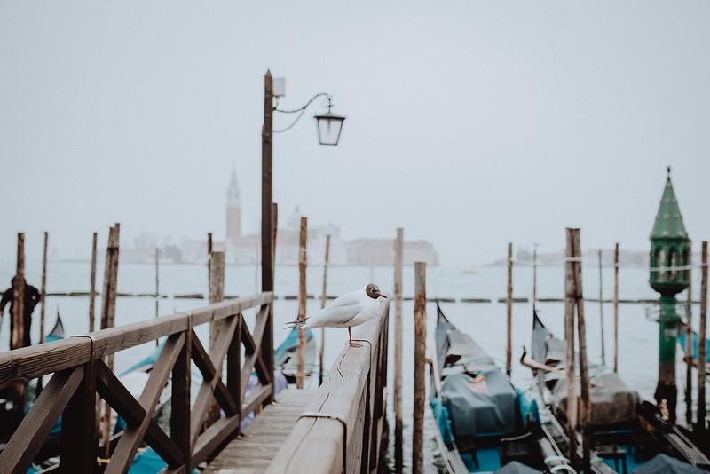Tu-Nguyen-Destination-Wedding-Photographer-Vow-Renewal-Venice-Italy-Hochzeitsfotograf-Italien-Venedig-43.jpg