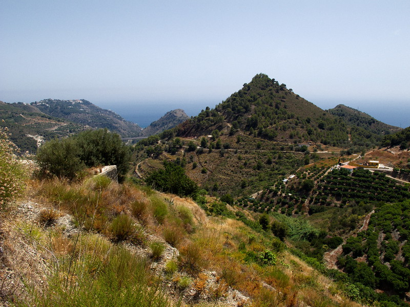 Hot Day in Andalucia 48.jpg