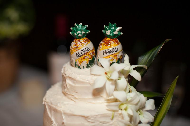 Kona Wedding photos-0178McMillen & Renz Wedding 6-10.jpg