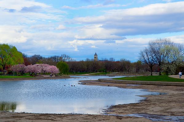 DC Landscapes