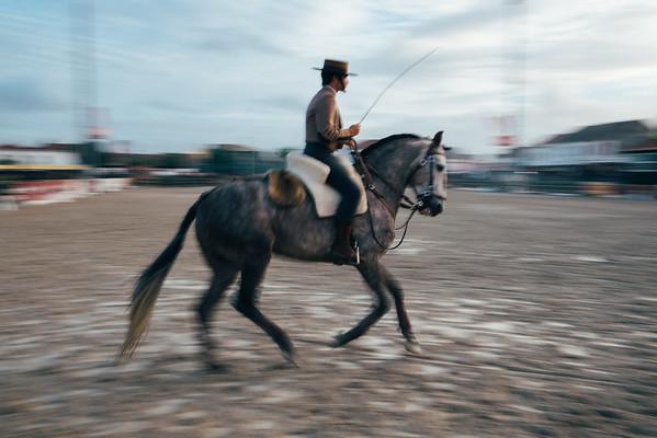 Golegã - Horse Fair and St. Martin's procession