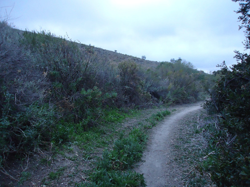 20120229008-Conejo Bike Park Meeting.jpg