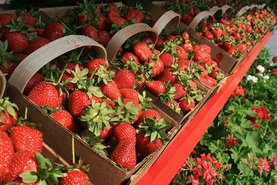 2007 May Strawberries and Corn