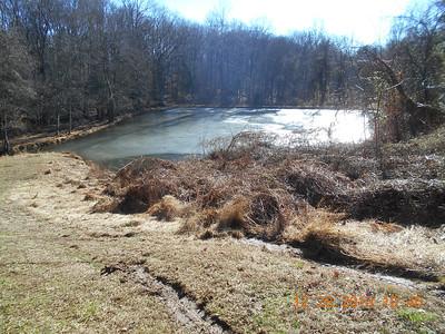Broad Creek Plunge December 2013
