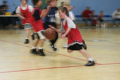Petersen Creation Basketball