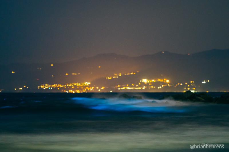 2020-05-02-bioluminescent-waves-7.jpg