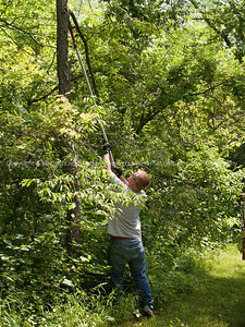 015-portrait_tree_trimmer-wdsm-25jun12-001-6948