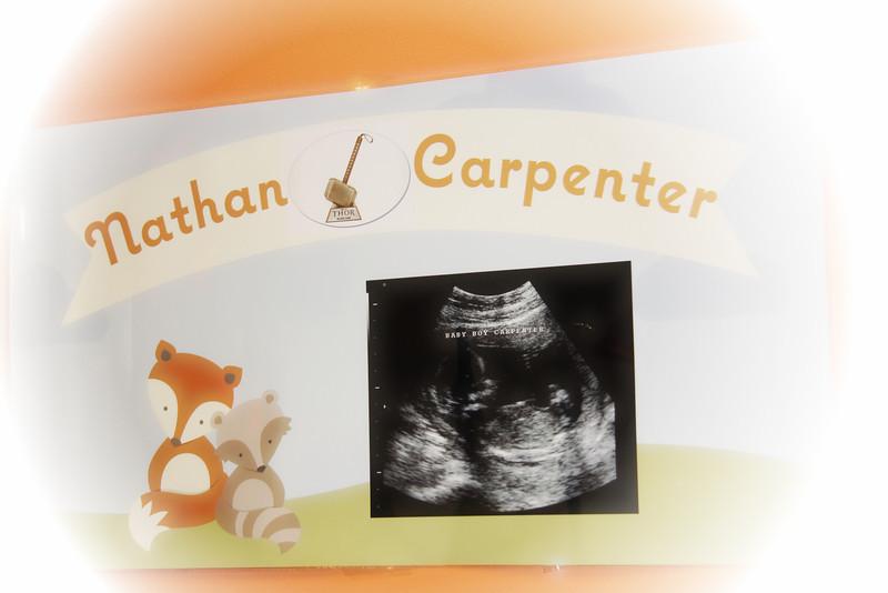 TAMARA CARPENTERS BABY SHOWE, BABY NATHAN  APRIL 12, 2014 CATHERINE KRALIK PHOTOGRAPHY  (2).jpg