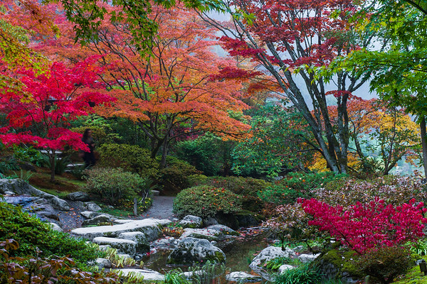 Seattle Japanese Garden