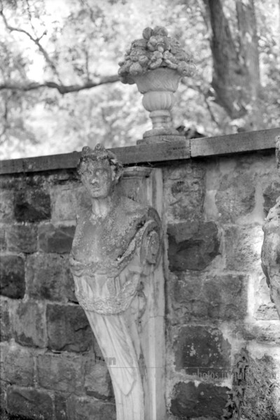 That Look! Statue BW