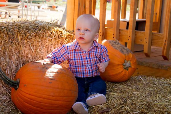 Pumpkin Festival 2015