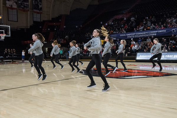 2019 Basketball State Semifinals - Wildcat Pride Dance