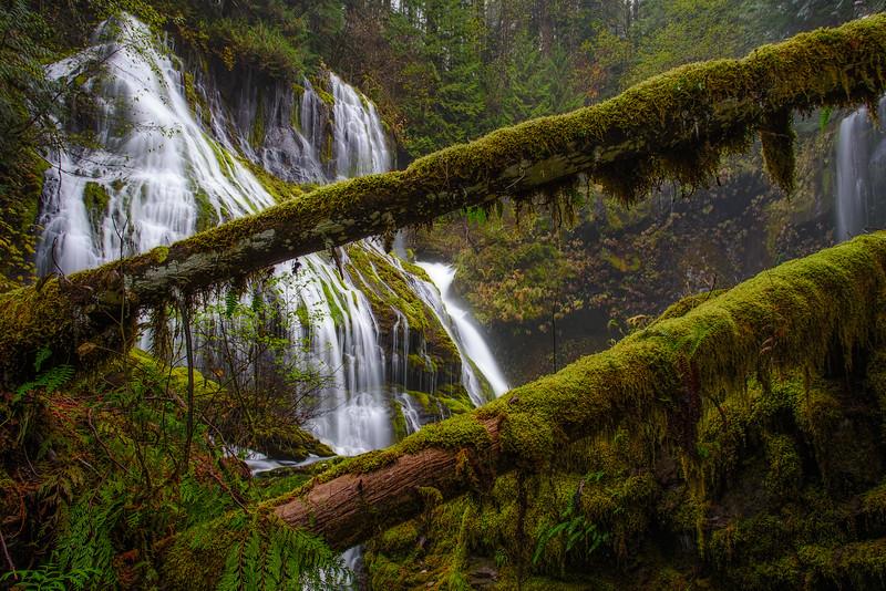Panther Creek Falls.jpg