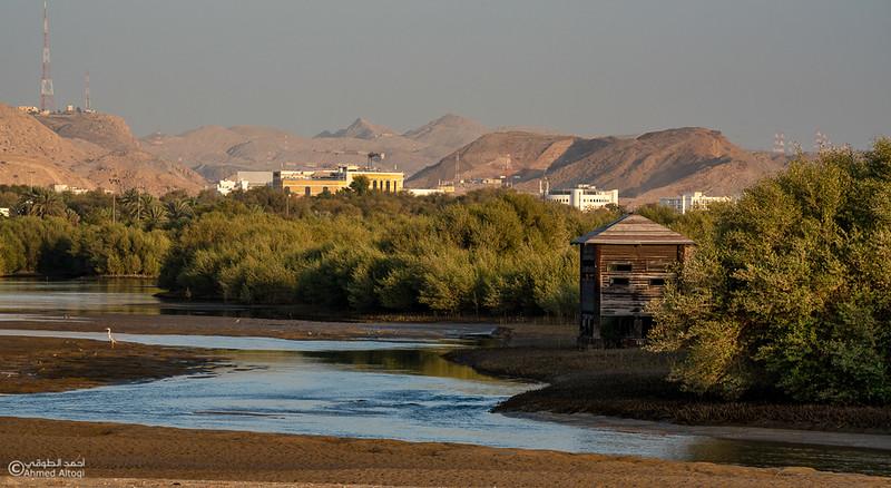 AL Qurum Park (33).jpg