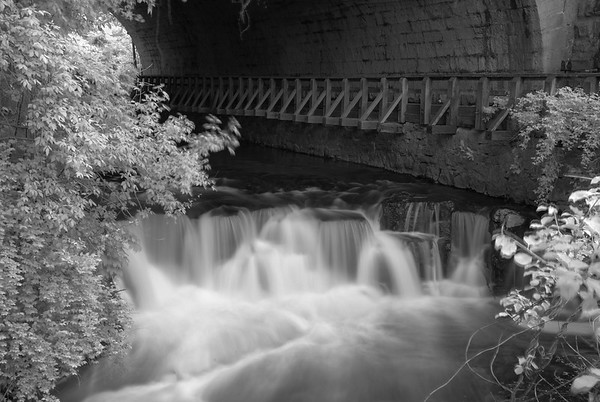 B and W Landscapes