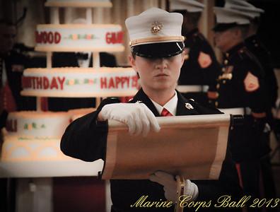 3RD Marine Division Ball 2013