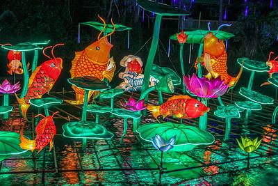 Illuminations in Tampa