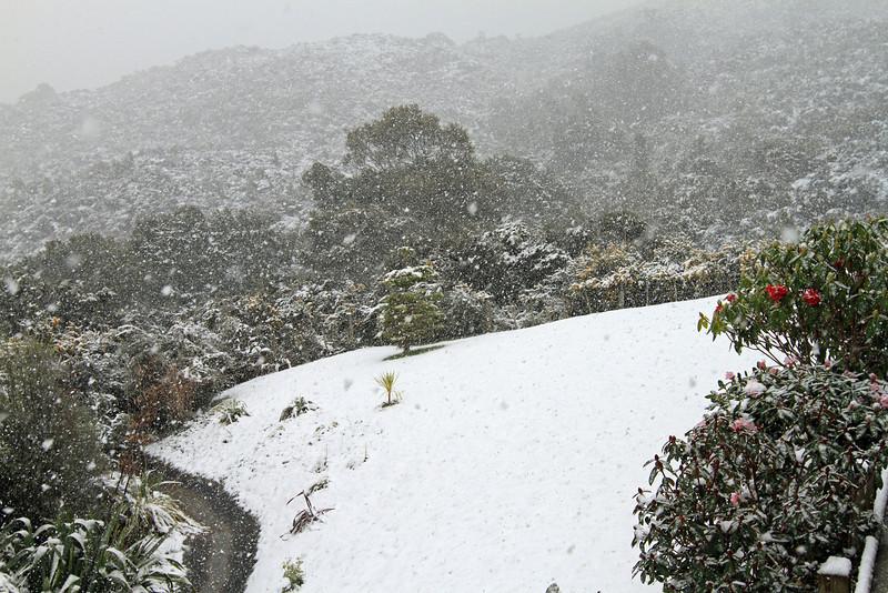 Snowing in my backyard, Riverstone, Upper Hutt - Monday 15th August 2011.