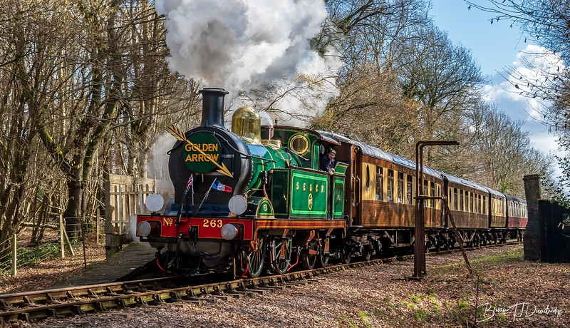 Bluebell_Railway (73 of 161).jpg