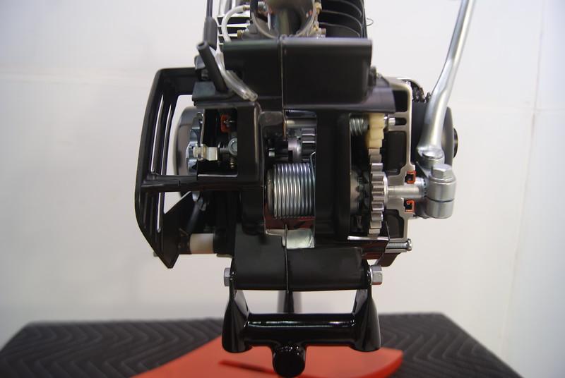 DSC09438.JPG