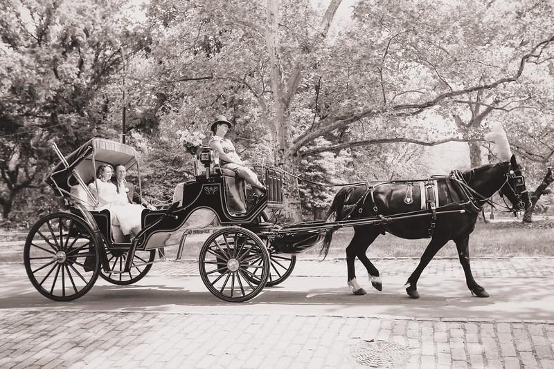 Caleb & Stephanie - Central Park Wedding-12.jpg