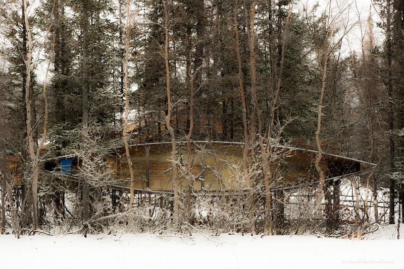 20151104-freezeup, wolf,0054.jpg