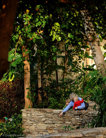 Places - DSM Botanical Center