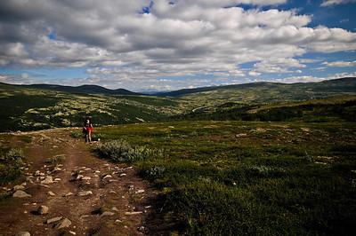 4 - Dovrefjell National Park